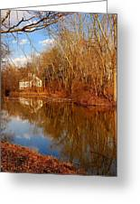 Scene In The Forest - Allaire State Park Greeting Card