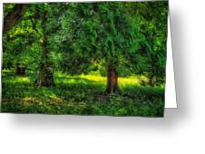 Scenes From An English Garden Greeting Card