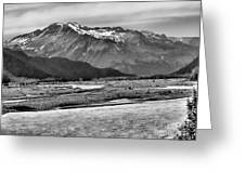 Scenic Alaska Bw Greeting Card