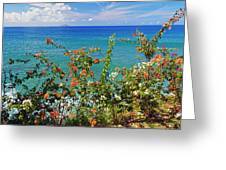Scenic Coastal View With The Desecheo Island Greeting Card by George Oze