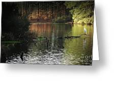 Scenic Elder Lake Greeting Card