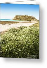 Scenic Stony Seashore Greeting Card
