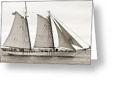 Schooner Harvey Gamage Of Islesboro Maine Greeting Card by Dustin K Ryan