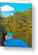 Schroon River Reflection In The Adirondacks-new York Greeting Card