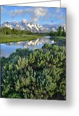 Schwabacher Landing In Grand Teton Greeting Card