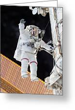 Scott Kelly, Expedition 46 Spacewalk Greeting Card