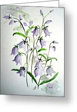 Scottish Blue Bells Greeting Card