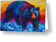 Scouting For Fish - Black Bear Greeting Card