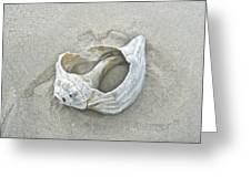 Sculpted By The Atlantic Ocean Greeting Card