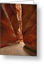 Sculpted By Wind And Water - Petra Greeting Card