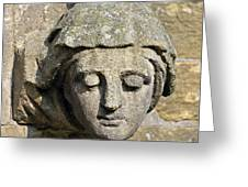 Sculpted Head Of Woman. Greeting Card