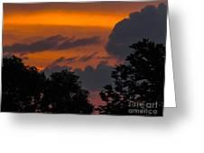 Mulberry Tree Sunrise Greeting Card