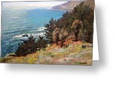 Sea And Pines Near Ragged Point, California Greeting Card