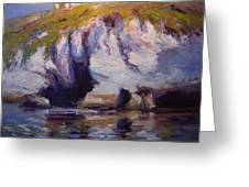 Sea Cliffs In Afternoon Light Greeting Card