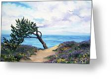 Sea Coast At Half Moon Bay Greeting Card