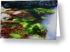 Sea Grass Greeting Card