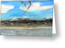 Sea Gulls Greeting Card