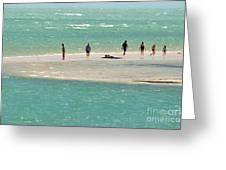 Sea Life Salt Life Key West Style  Greeting Card