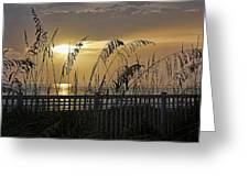 Sea Oat Sunset Greeting Card