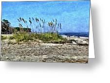 Sea Oats And Coastline Greeting Card