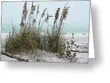 Sea Oats In Light Fog Greeting Card