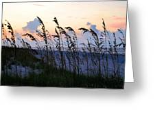 Sea Oats Silhouette Greeting Card by Kristin Elmquist