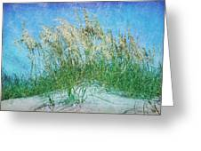 Sea Oats Two Greeting Card