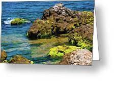 Sea Of Marmara Seashore Greeting Card