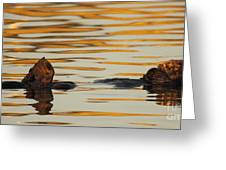 Sea Otter Laying Low In The Water Greeting Card