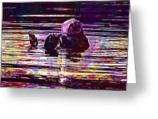 Sea Otter Swimming Floating Water  Greeting Card