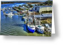Sea Ray Of Savannah  Greeting Card