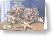 Sea Shell Collection Greeting Card
