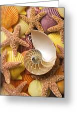 Sea Shells And Starfish Greeting Card by Garry Gay