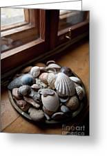 Sea Shells And Stones On Windowsill Greeting Card