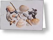 Sea Shells On White Sand Greeting Card
