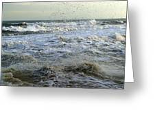 Sea Spray Greeting Card