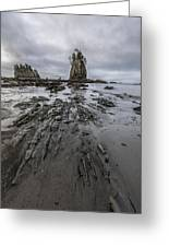 Sea Stack Paradise Greeting Card