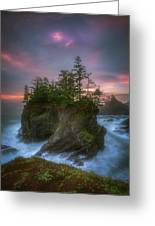Sea Stack With Trees Of Oregon Coast Greeting Card