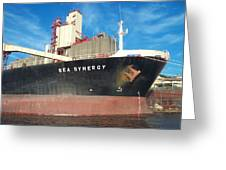 Sea Synergy Hull Greeting Card