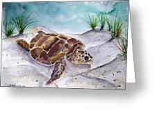 Sea Turtle 2 Greeting Card