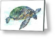 Sea Turtle #20 Greeting Card