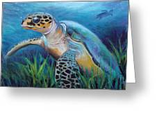 Sea Turtle Cove Greeting Card