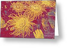 Sea Urchin 6 Greeting Card