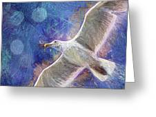 Seagull Against Blue Abstract Greeting Card