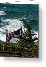Seagull And Flag Greeting Card