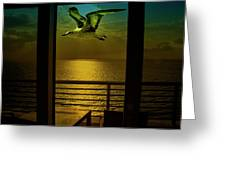 Seagull And Sunset Clouds Greeting Card by Fernando Cruz