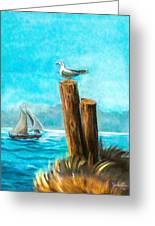 Seagull At Port Entrance Greeting Card