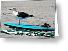 Seagull On A Surfboard Greeting Card