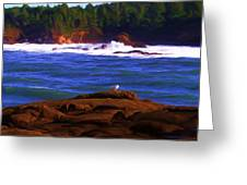 Seagull On Rock Greeting Card