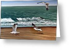 Seagulls 2 Greeting Card